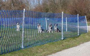 Callieway Agility Parcoursabgrenzung, Hundesportzaun, 1m hoch, blau, extra reißfest, verschiedene Längen