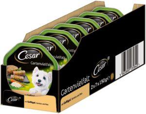 Cesar Gartenvielfalt für ausgewachsene Hunde