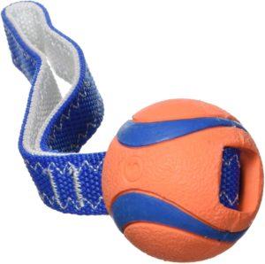 Chuckit! Ultraball als Zerrspielzeug, Sehr robuste und strapazierfähige Handschlaufe