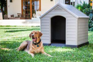 Curver - Hundehütte für Garten PVC/Kunstharz beige/braun 99x95x99 cm