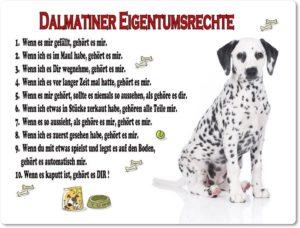 Eigentumsrechte Dalmatiner