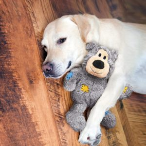 KONG Wild Knots Bear, Plüschspielzeug Hundespielzeug