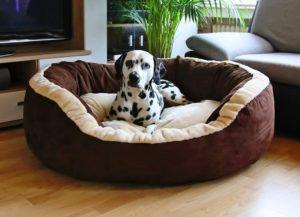 Knuffelwuff extra weiches Hundesofa in XL und XXL