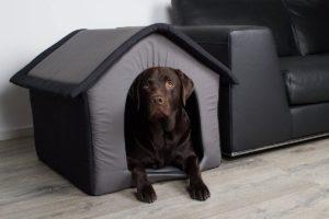 SAUERLAND Stoff Hundehütte, Hundehaus, transportabel, grau 64x57x60cm