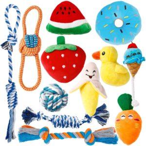 Toozey Welpenspielzeug Set, unzerstörbar für Welpen & kleine Hunde Hundespielzeug