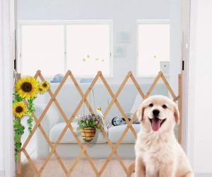 AllRight Hundeabsperrgitter, Hundegitter Hundegatter für Treppen, Türen, Balkone, Garten etc. aufziehbar