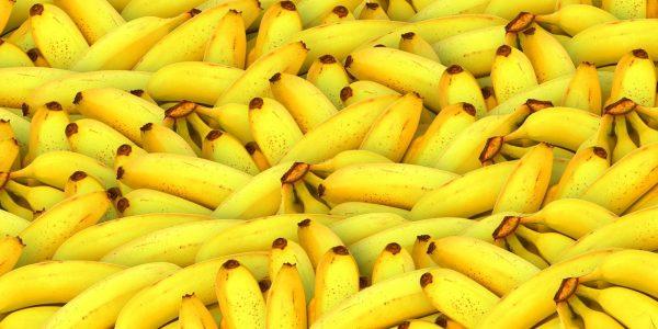 Dürfen Hunde Banane essen